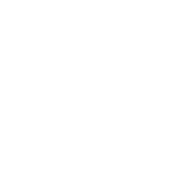 Bawn Lodge Logo